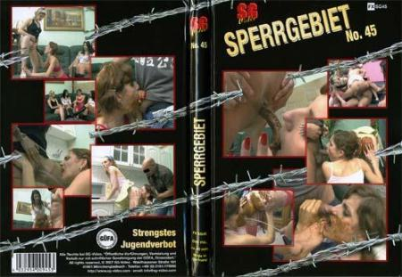 Sperrgebiet No. 45 (ShitGirl) 14 November 2017 [DVDRip] 999 MB