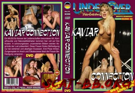 Kaviar Connection (ShitGirl) 9 June 2018 [DVDRip] 832 MB